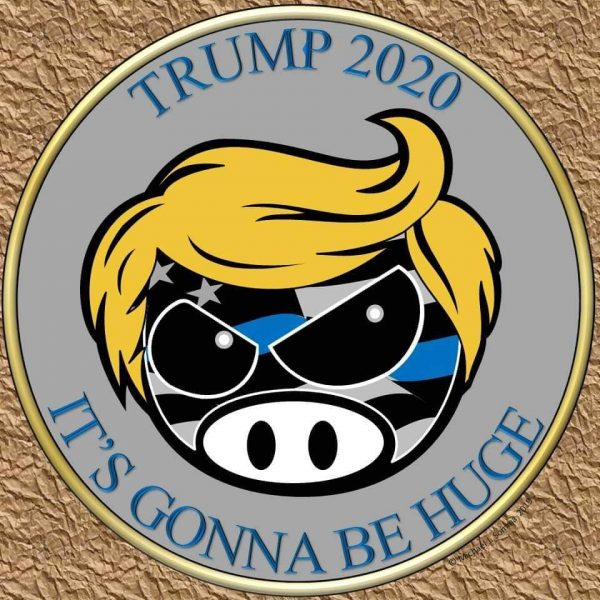 its-going-to-be-huge-trump-coin